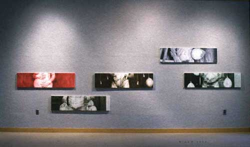 The Belly Tales Installation of paintings exhibited in the Lake Erie College show.